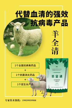 山羊得了小反刍病