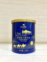 伊犁雪蓮乳業配方駱駝奶廠家合作圖片