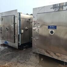 温州二手供应真空冷冻干燥机质量可靠图片