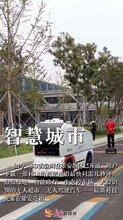 雄安二环京雄世贸港投资意义济南图片