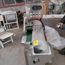 蒜苗切段机芹菜切段机型号切葱花机器芹菜切段机厂家切葱花机设备图片