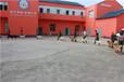 遼寧寵物學校培訓-沈陽寵物學校培訓-派多格寄訓中心