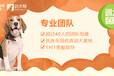 上海宠物训练-专业狗?#36153;?#32451;-?#31561;?#24110;