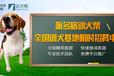 桂林寵物寄訓訓練基地-訓犬幫
