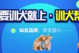 上海狗?#36153;?#32451;基地-?#31561;?#23398;校-派多格寄训中心