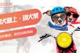 哈尔滨宠物培训-训犬帮