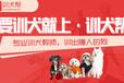 上海哪家?#31561;?#23398;校好-狗?#36153;?#32451;多少钱-?#31561;?#24110;