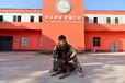 江蘇寵物學校培訓-南京寵物學校培訓-派多格寄訓中心