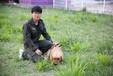 江苏哪里有训犬师-南京哪里有训犬师-派多格寄训中心