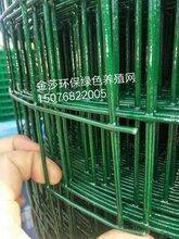 厂家直销铁丝网,围网,防护网欢迎选购图片