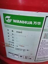 上海哪里回收油漆厂家资讯(回收)图片