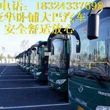 HI:灌云到(柳州卧铺客车)乘车指南图片