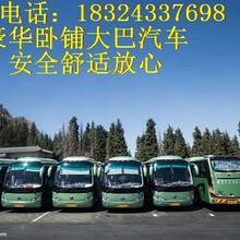 HI:东海到(屏南长途汽车)价格优惠图片