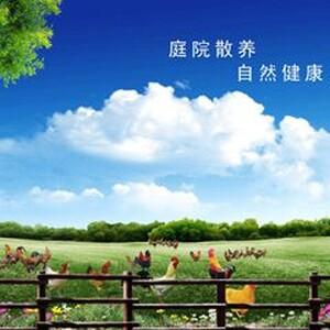 广西牛轰轰农业发展有限公司