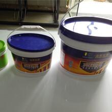 远安县底漆面漆耐候图片
