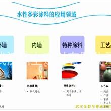 厂家推荐超值的水包砂水包水厂家市场报价图片