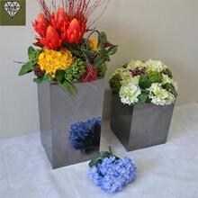 上海花盆花架、花箱制作厂家直销图片
