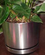 福建花盆装饰、花箱定做来图加工图片