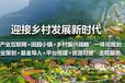 广州特色文化小镇,海口特色小镇规划发展,湖北田园综合体规划
