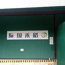 香港仓储本地操作进口物流服务