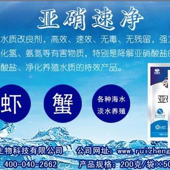 亚硝速净降解亚硝酸盐,针对水体硝酸盐含量高