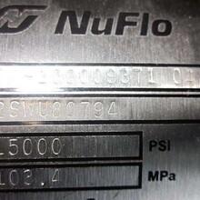 NuFlo測量系統型號45980-101圖片