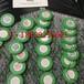 StockX绿牌绿叉购买正确方法