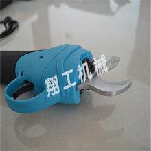 東明電動修枝剪價格圖片