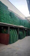 舟山停車場用hdpe植草格花園綠化植草格價格圖片