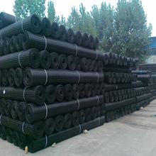 专业生产销售双向拉伸塑料土工格栅2020精品30KN塑料格栅图片
