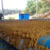 3.5米帶式壓濾機