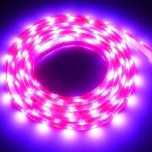 厂家直销led植物灯led生长灯大功率植物灯植物生长灯18w图片