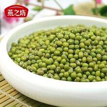 廠家東北綠豆低價直銷綠豆綠豆湯原料價格圖片