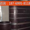 内蒙古圆柱模板