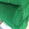 厂家供应2018年精品边坡防护三维植被网