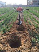 电线杆挖坑机种植专用挖坑机大棚立柱挖坑机图片