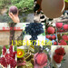 江西南昌晚熟桃树苗基地卖啥价格、果树苗哪里有售