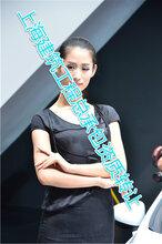 上海钢结构二级+地基基础二级急出手急急急