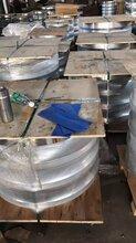 河北生产销售管板法兰-碳钢管板法兰现货