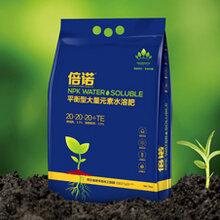 倍诺平衡型水溶肥,作物提质增产抗病效果好