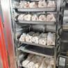 液氮速冻设备