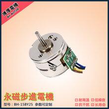 智能门锁电机小区门禁电机智能箱柜电机直流式5V博厚定制