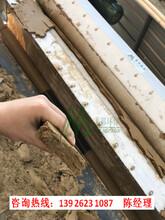 金矿污泥分离设备废水处理机图片