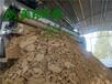 美邦洗沙濃縮污泥脫水機生產廠家