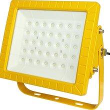 食品加工廠LED防爆燈60W
