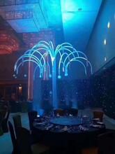 上海烟泡树出租、创意泡泡树租赁图片