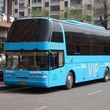 客运专线+武汉到扬州长途汽车天天发车图片
