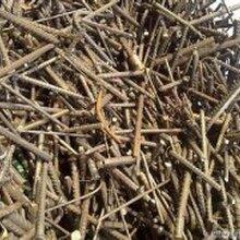 廣州天河專業二手鋼筋回收廣州天河二手鋼筋回收多少錢