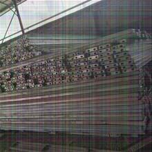 河源东源市政管道钢板桩工程咨询电话(承接6米9米)图片