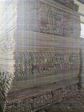 清远连钢板桩围护工程、承接6米打桩价位图片